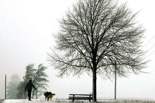 """Drei neue """"Premium-Winterwanderwege"""" in Titisee-Neustadt"""