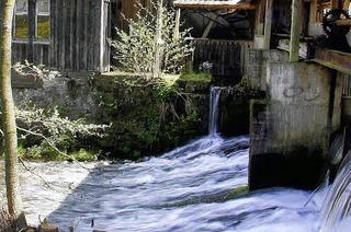Mahlzeit in der Mühle