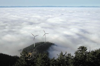 Bei Inversion hilft nur die Flucht in den Schwarzwald