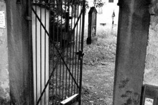 Alter Friedhof: Ein Ort voller Tod und Leben