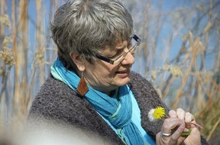 Heilpflanzen als Antwort auf die Gesundheitsreform
