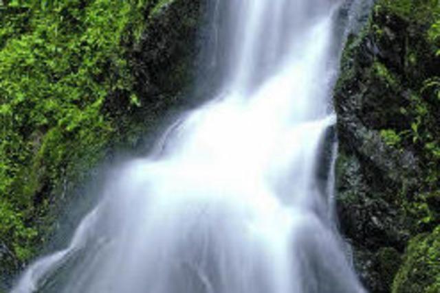 Retter, die auch steile Felswände bezwingen