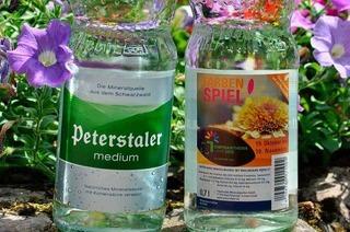 Gewinnspiel zur Chrysanthema