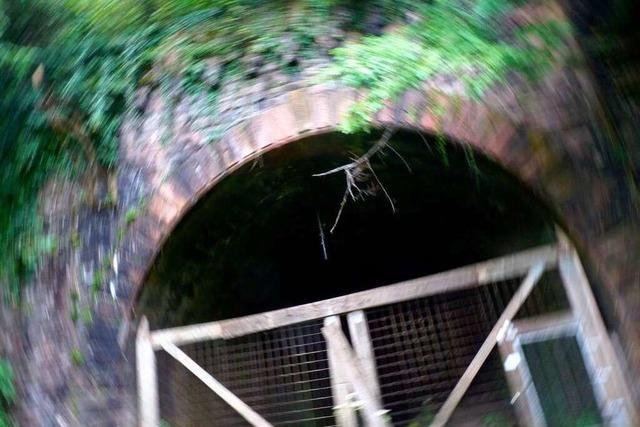 Der Hasler Tunnel: Weg ins Ungewisse
