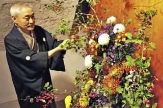 """""""Die Chrysantheme gilt als wertvollste Blume"""""""