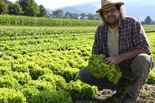 Biokisten: Frische Überraschung vom Feld