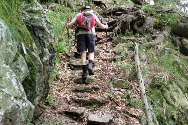 Eine Spur wilder - der Alpine Pfad am Feldberg