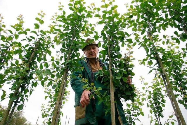 Kampf um Landesgartenschaugelände: Die Fakten zum Fall Grafmüller