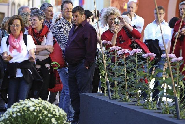 Halbzeitbilanz: So waren die ersten elf Tage der Chrysanthema