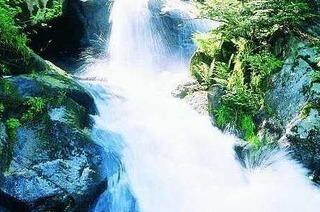 Wasserf�lle im Schwarzwald