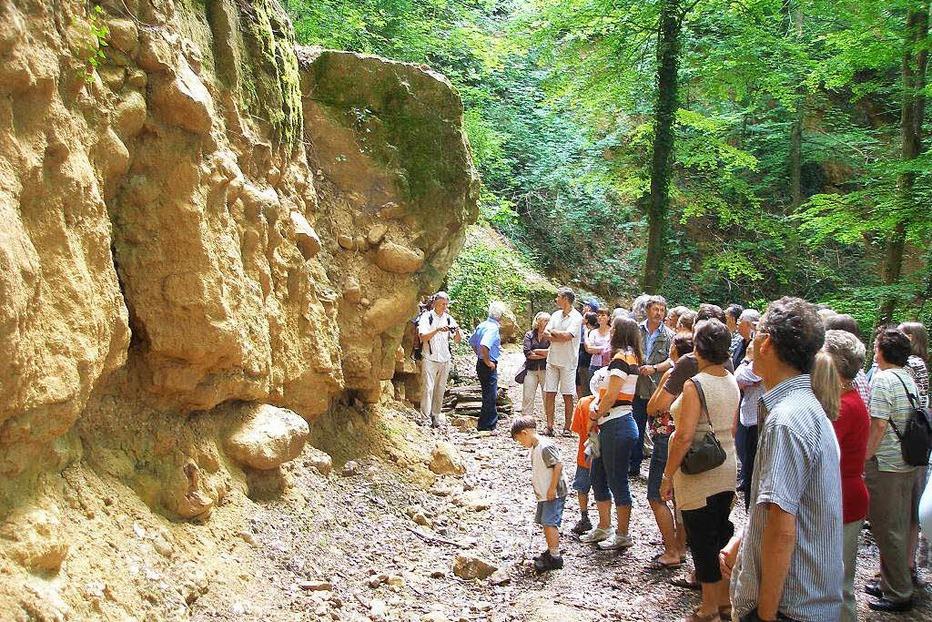 Historische Steinbrüche - Pfaffenweiler