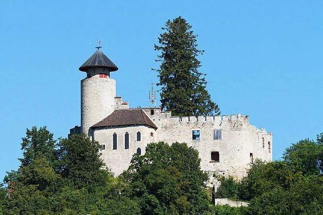 Burg Birseck