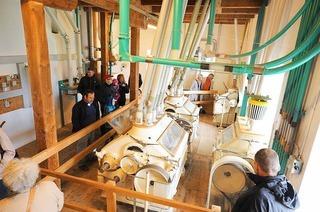 Jenne-Mühle (Tiengen)