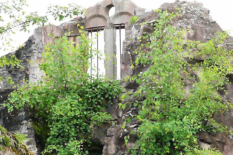 Ruine Diersburg - Hohberg