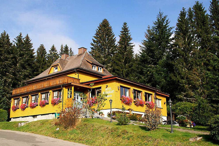 Hotel-Restaurant Peterle (Falkau) - Feldberg
