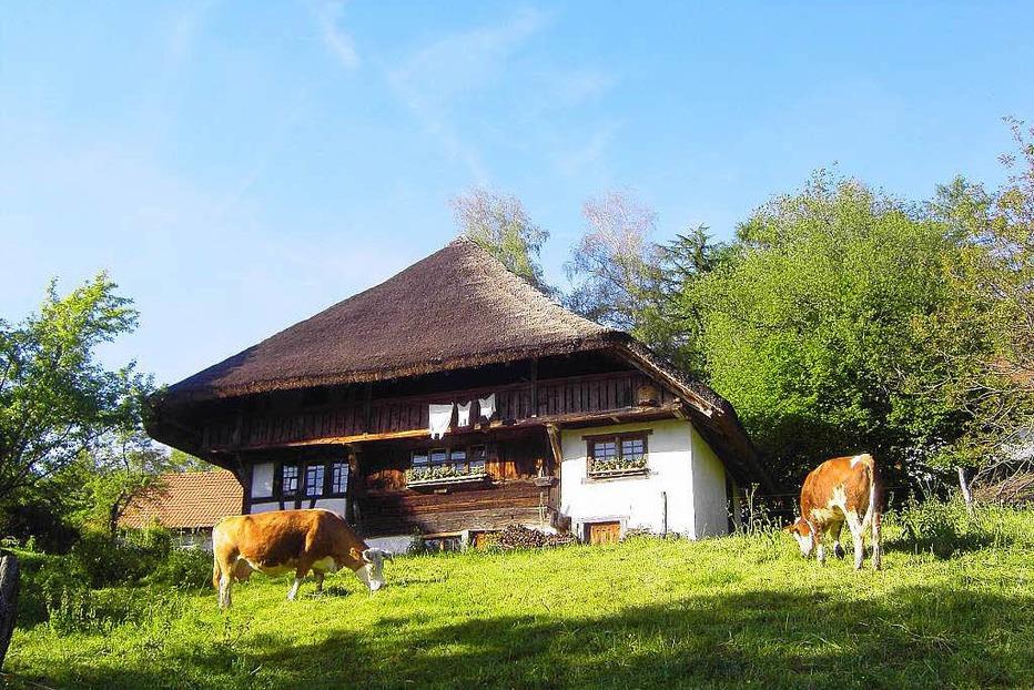 Bauernhausmuseum Schneiderhof - Steinen