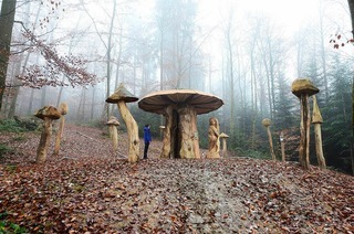Mycelium Pilzlehrpfad