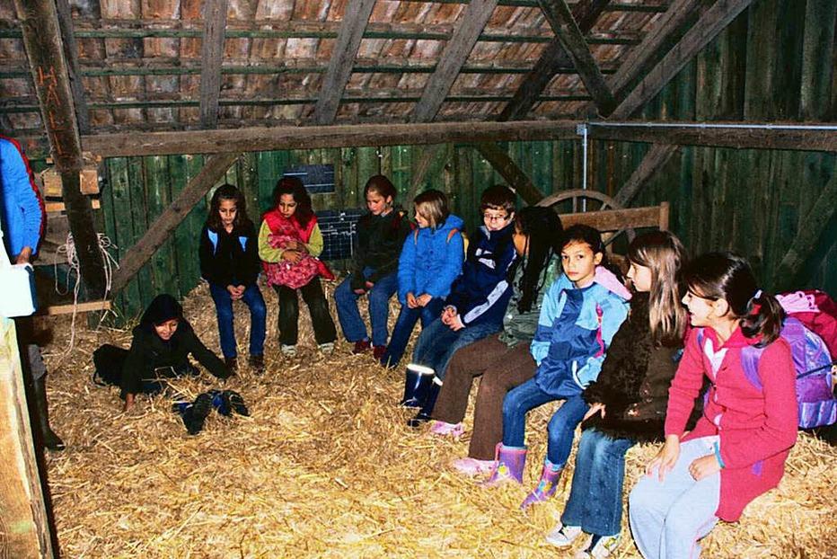 Schulbauernhof auf der Domäne Hochburg - Emmendingen