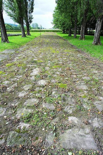 Römersiedlung und Dianatempel - Friesenheim