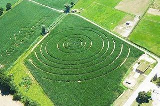 Maisfeld-Labyrinth Opfingen