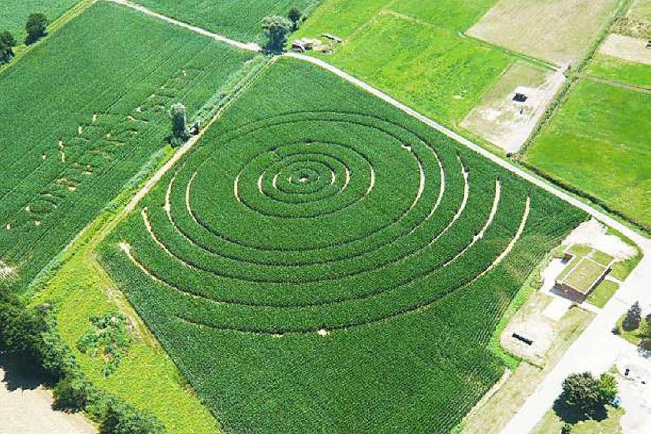 Maisfeld-Labyrinth Opfingen - Freiburg