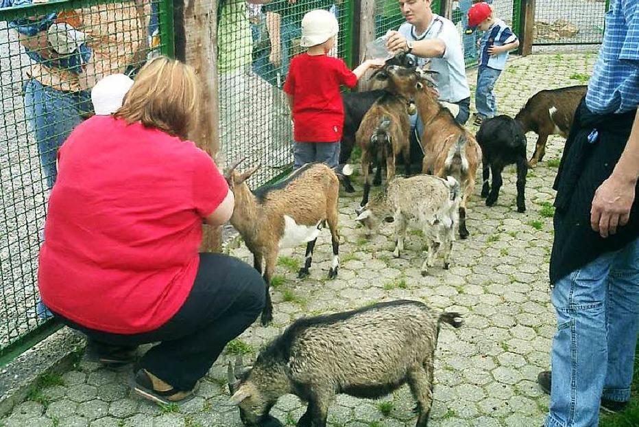 Familienfreizeitpark Funny-World - Kappel-Grafenhausen
