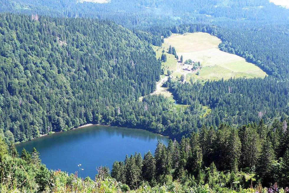 Feldsee - Feldberg