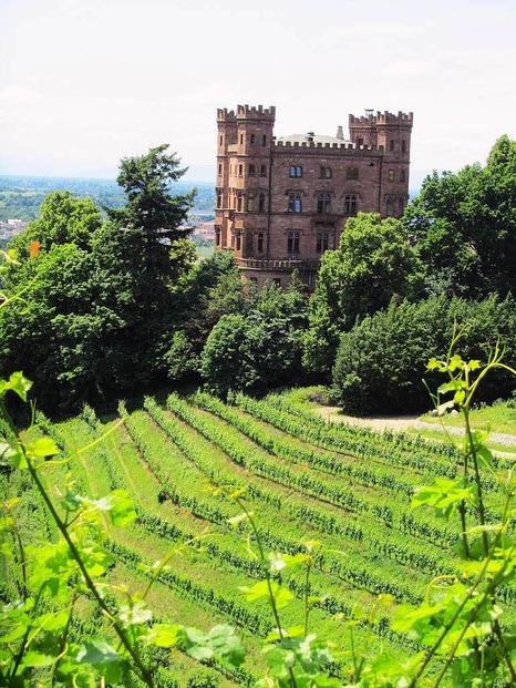 Schloss Ortenberg - Ortenberg