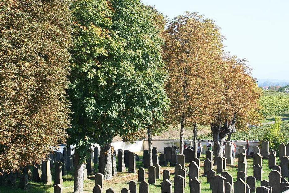 Jüdischer Friedhof - Ihringen