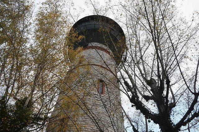 Narrenmuseum Wasserturm