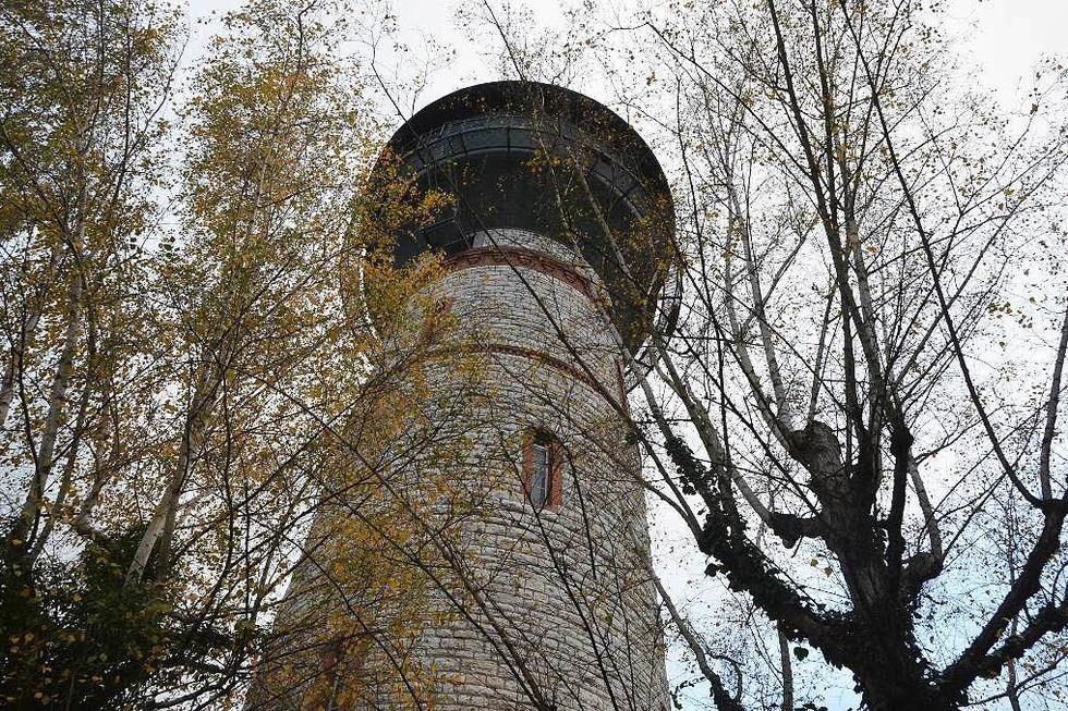 Narrenmuseum Wasserturm - Rheinfelden