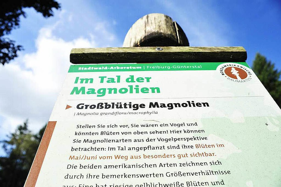 Stadtwald Arboretum - Freiburg