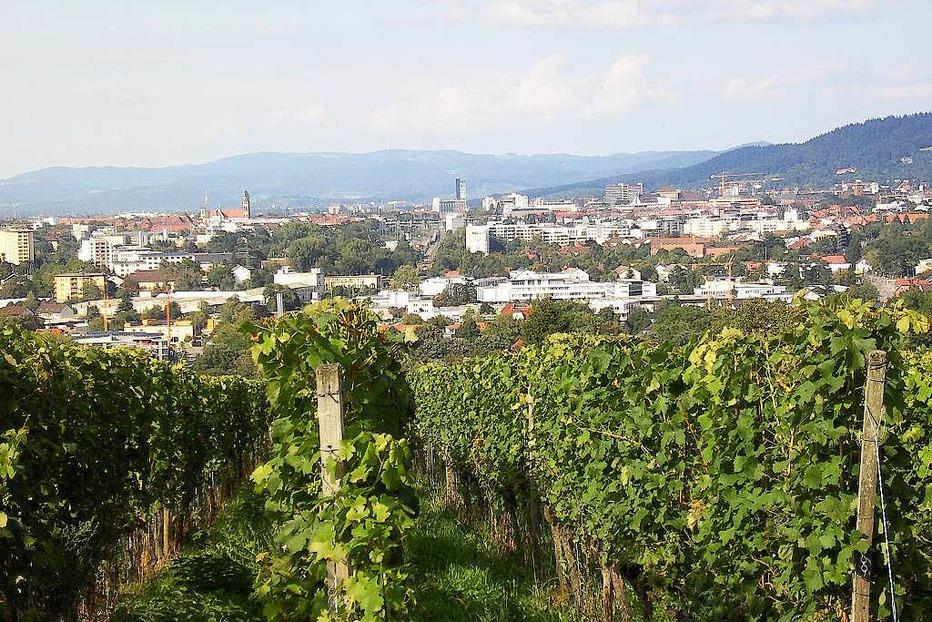 Jesuitenschloss - Merzhausen