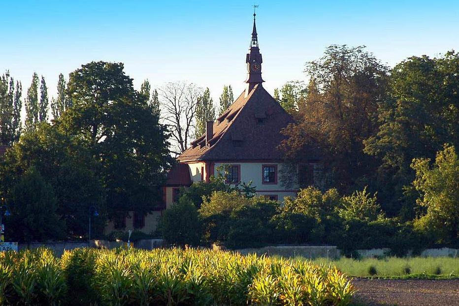 Feldkircher Schloss - Hartheim