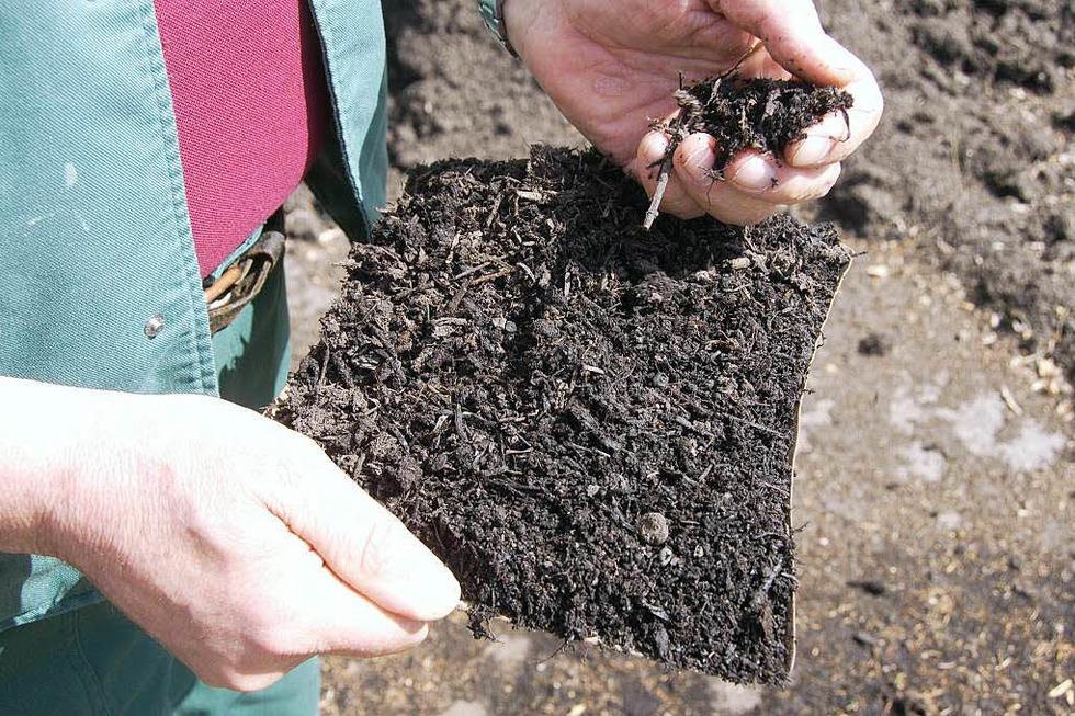 Kompostieranlage Minseln - Rheinfelden