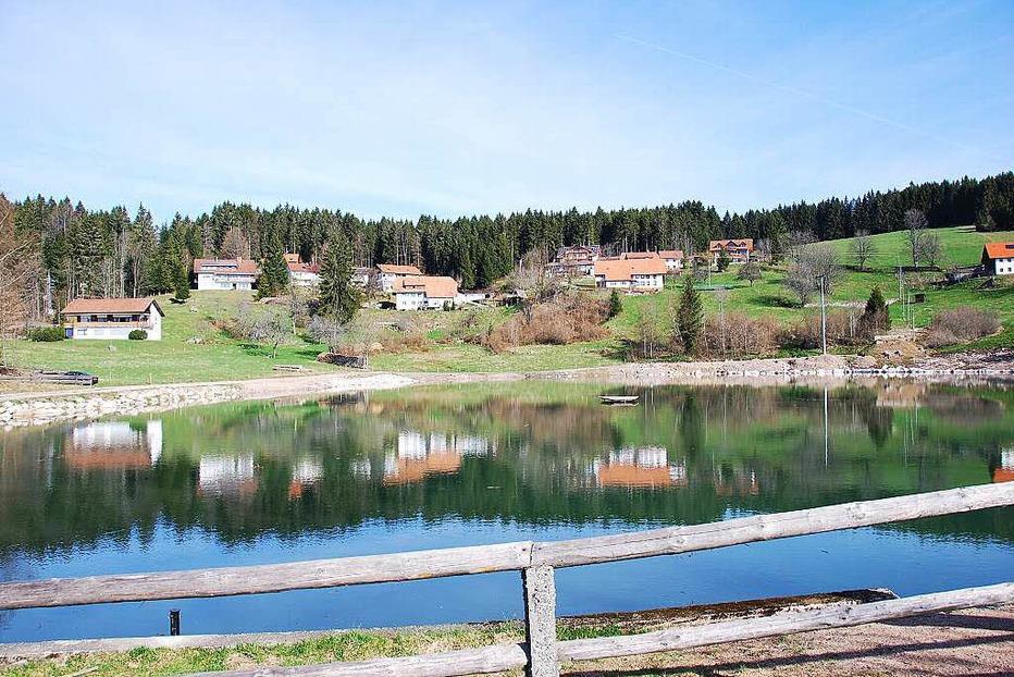 Hierholzer Weiher - Dachsberg