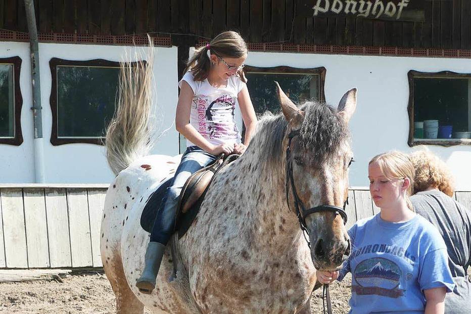 Ponyhof in Karsau - Rheinfelden