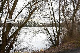 Dachswaldsee