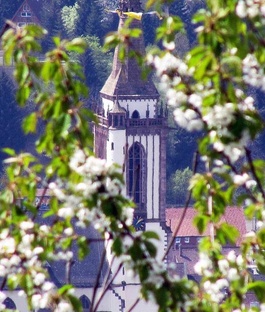 Münster St. Jakobus Neustadt - Titisee-Neustadt