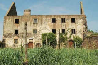 Schlossruine Burkheim