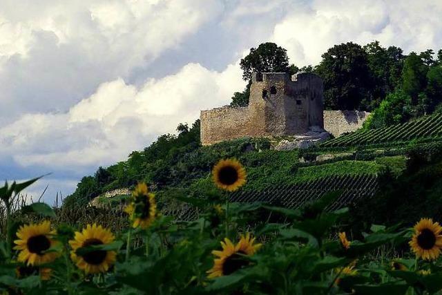Burg Lichteneck Hecklingen