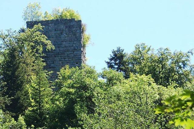 Burg Steinegg
