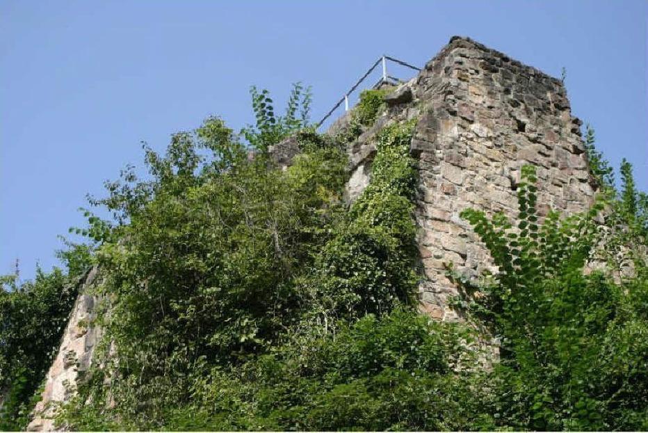 Burgruine Kirnburg - Herbolzheim