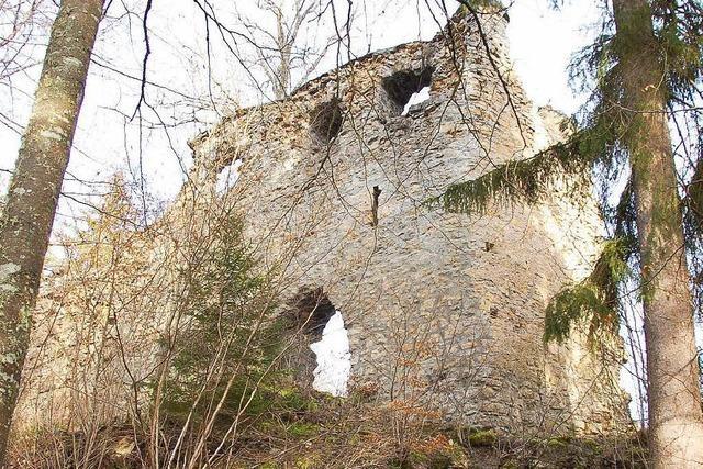 Burg Neu-Tannegg