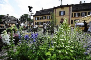 Schlosspark Ebnet