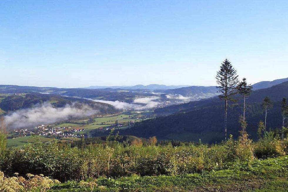Hörnleberg - Gutach (Breisgau)