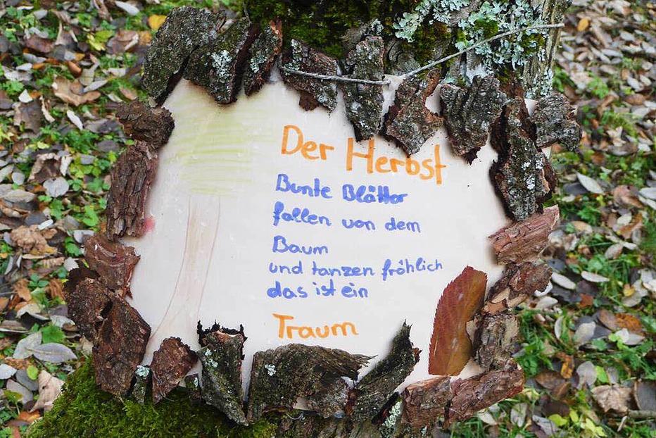 Erlebniswald Felsele - Titisee-Neustadt
