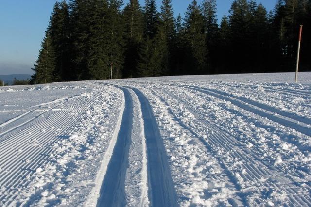 Langlauf im Schwarzwald