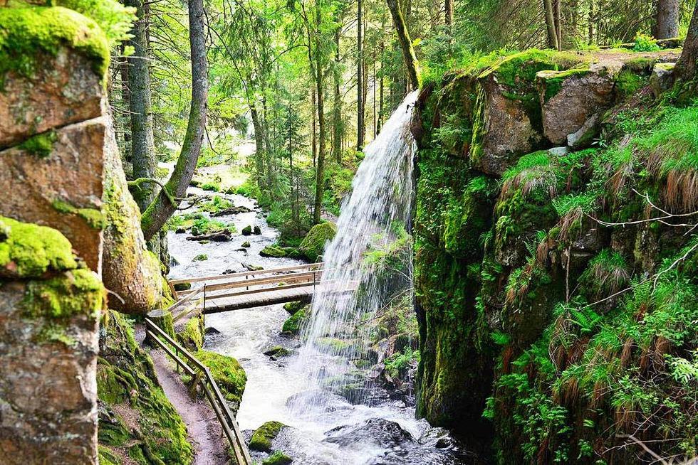 Wasserfall Menzenschwand - St. Blasien