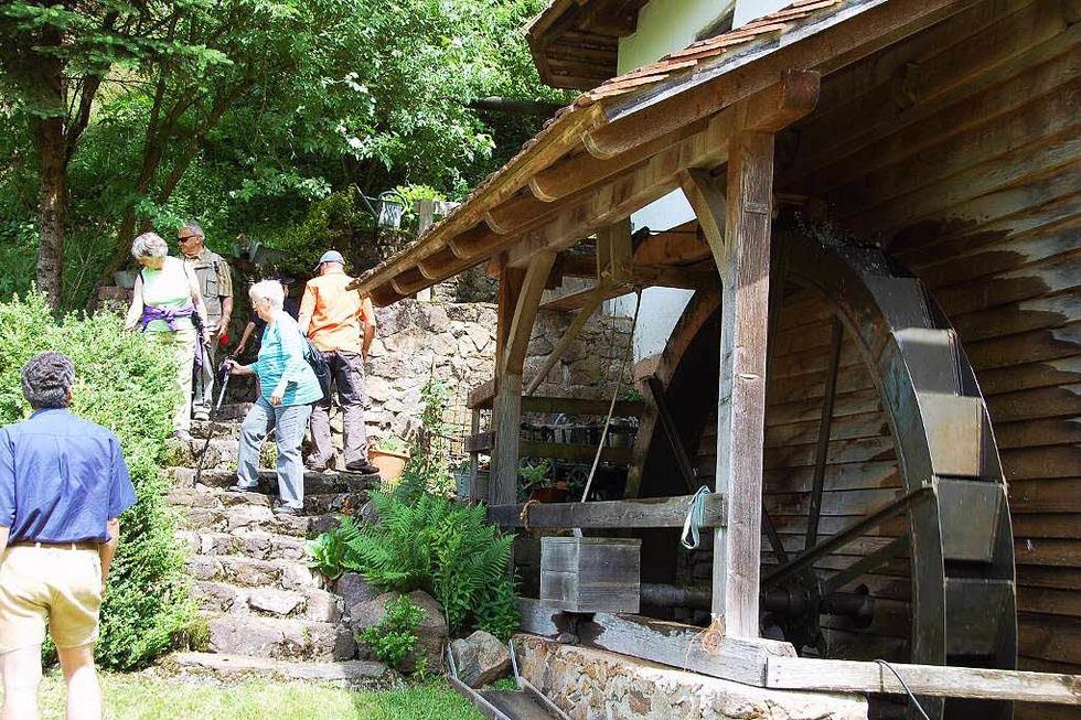 Schillingerhofmühle (Pechofental) - Freiamt